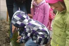 Sadzenie drzew w przedszkolu